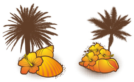 Seashell elements, orange 2 - vector Stock Vector - 8986753