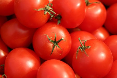 Tomatoes Stock Photo - 435213