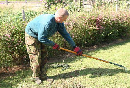 Man raking grass Stock Photo