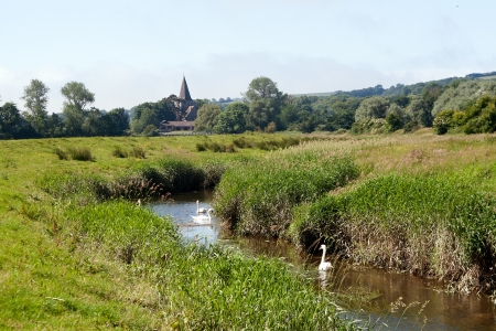 Swans on river Cuckmere with Alfriston church in distance Stock Photo - 20720497