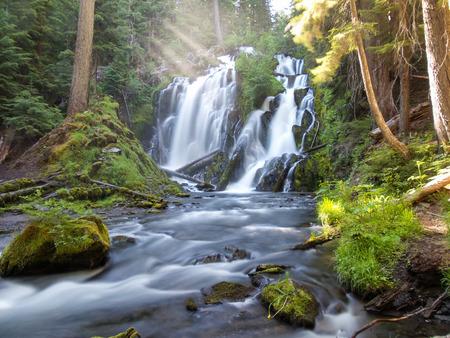 oregon cascades: National Creek Falls, Oregon