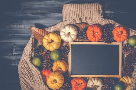 Top view of Halloween day and Thanksgiving background, orange pumpkin, yellow pumpkin, white pumpkin, Knitting sweater, pinecone and black board on dark background with copy space for text. Halloween concept, Thanksgiving concepts.