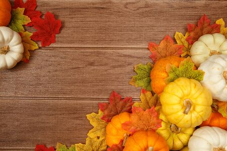 Top view of Thanksgiving concepts on wood background, Pumpkins, Pine cone,  maple leaves and copy space for text.