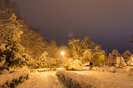 Winter Park In A Cloudy Evening Covered With Snow