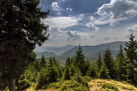 Late Summer Mountain Landscape