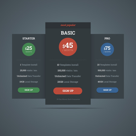 Pricing table template for hosting business with three plans.
