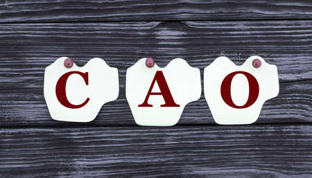 concept of the word CAO on paper pinned sheets on a beautiful blue background. Business concept