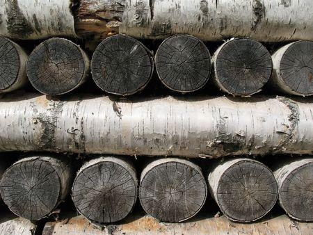 l petrol: Pila de le�a de abedul  Foto de archivo