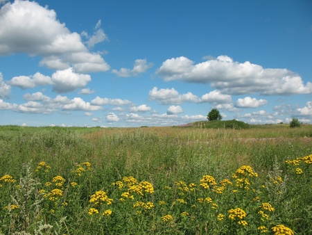 Summer landscape with clouds Stock Photo - 12137135