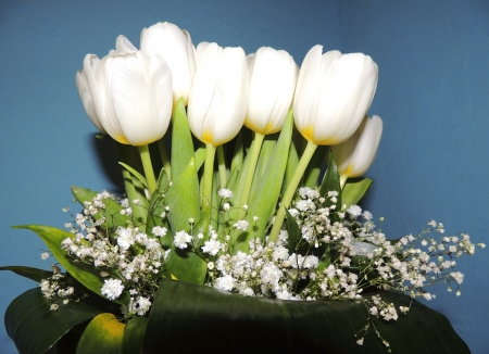elegans: Bouquet of white tulips and Gypsophila elegans Stock Photo