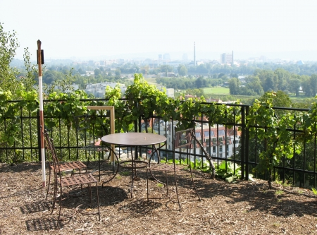 troy: Vineyard in Troy (Troja) in the north of Prague, an observation deck Stock Photo