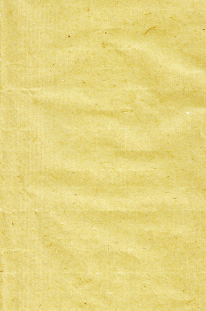 absorb: Paper mustard yellow hue