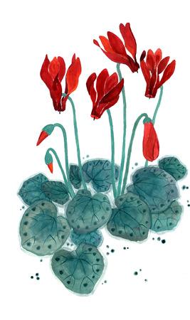 Blooming cyclamen Figure style Guohua Stock Photo