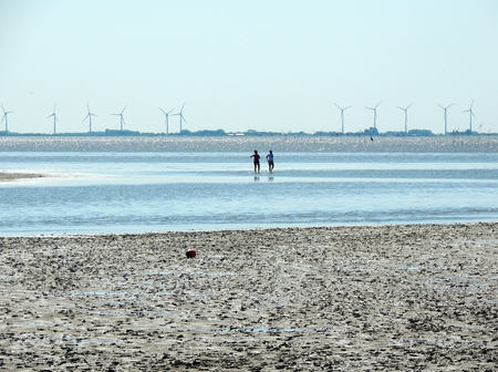 Coast of North Sea at low tide, watts Stock Photo