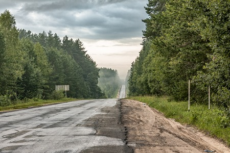 Morning road in the forest. Russia.