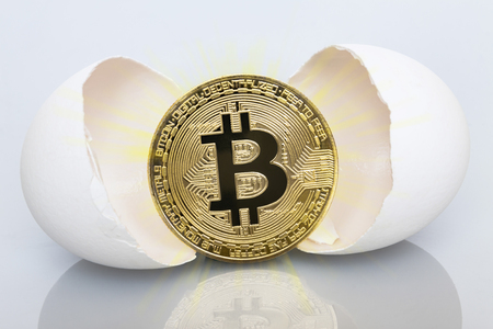 The birth of bitcoin. Bitco hatch from eggs. Stock Photo