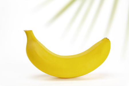 Banana on a white background with a sprig of paprotnik