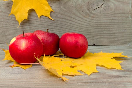Apples with yellow leaves of maple lie on wooden boards.