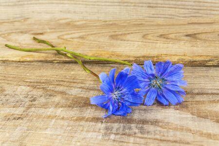 A bouquet of wildflowers lies on wooden boards