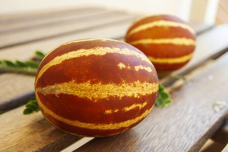 Melon crossed with a pumpkin lies on wooden boards 写真素材