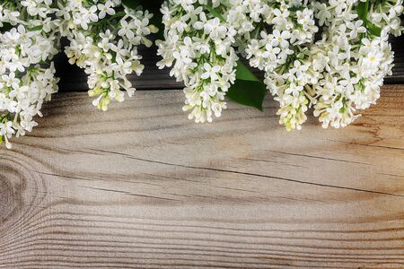 The beautiful lilac on a wooden surface. Zdjęcie Seryjne