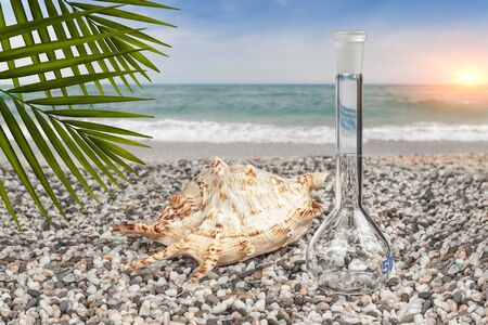 Seashell with a chemical flask on the sandy seashore. The concept of sea water quality control