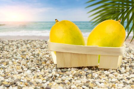 Mango in a basket by the warm sea