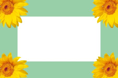 White sheet of paper on a colored background surrounded by sunflowers.