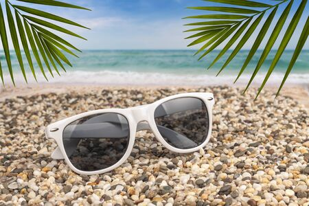 Sunglasses lie on the beach by the sea surrounded by fern