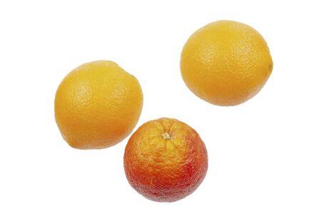 Big red orange among yellow oranges, close up.