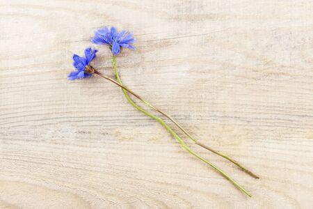 Blue summer flowers lie on a natural wooden background.