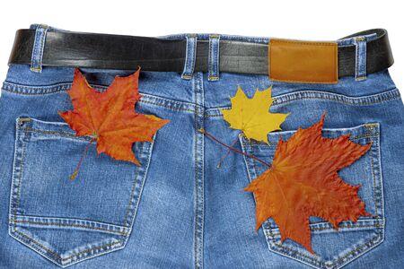 Autumn maple leaves lie on jeans