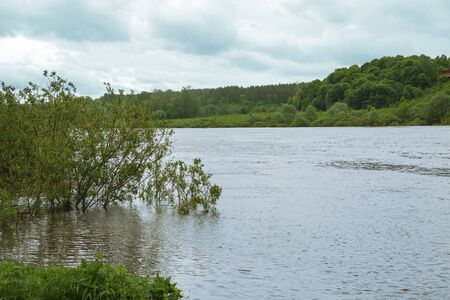 High water level in the river in summer.
