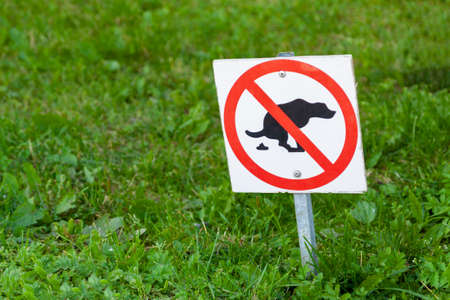 On the lawn, put the sign away after the dog.