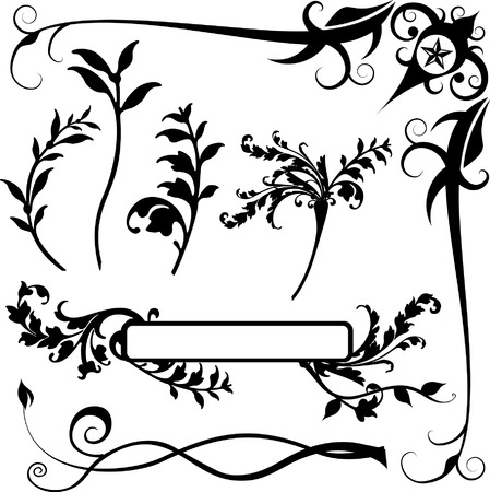 Floral Borders and Decorations Vector