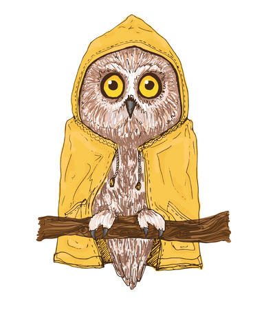 boreal: Isolated owl illustration. Colorful bird of brown color in bright yellow raincoat. Small boreal owl sitting on branch.