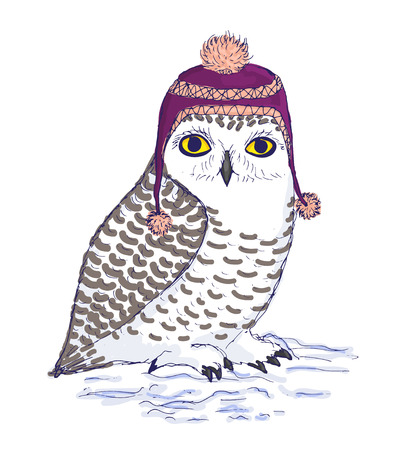 pompon: Isolated owl illustration. Colorful bird of white color in purple hat with strings and pompon. Ink vector illustration. Snowy arctic owl standing on snow.