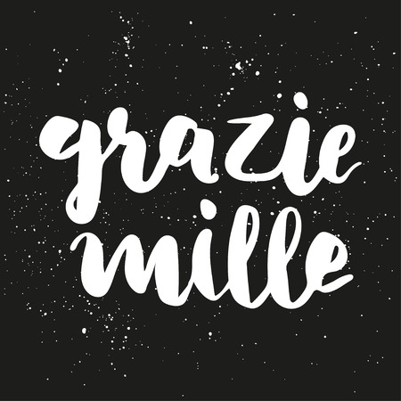 thanks a lot: Brush lettering composition. Phrase - Thanks a lot in italian - grazie mille on dark gray background with white ink splashes. Illustration