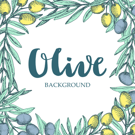 hand lettered: Decorative olive frame. Colorful branches around white space and hand lettered word Olive.