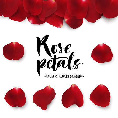 red rose petals: Realistic red rose petals set. Six different objects, editable shadow on white background.