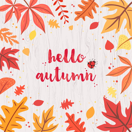 Hello autumn card on gray wooden background. Colorful and vivid composition of text hello autumn and hand-drawn leaves and bug. Illusztráció