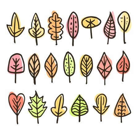 Set of different autumn leaves in various colors like green, yellow, orange and coral. Isolated illustrations on white background. Illustration