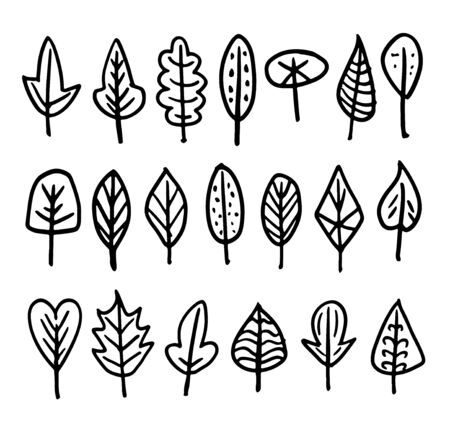 Set of different leaves hand-drawn in cute doodle style. Black illustrations isolated on white background