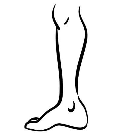 Black contour line illustration of thin leg, minimalistic icon 向量圖像
