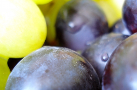 Grapes background  photo