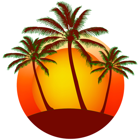 print from Palms silhouettes at orange sunset sky, vector background