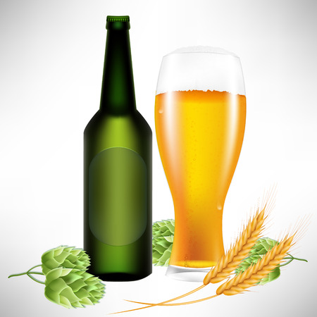 ferment: Realistic 3D vector illustration of hops, beers, glasses, bottles and wheat.