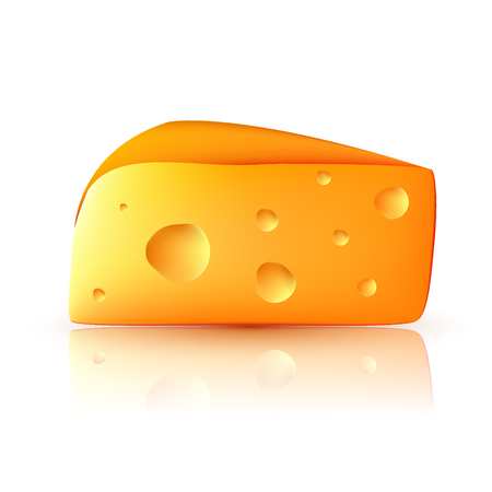 Realistic 3d cheese. Vector illustration on white background.