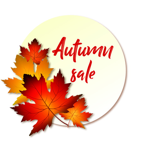 A bouquet of maple leaf with a round frame and an inscription autumn sale. Vector illustration on a white background