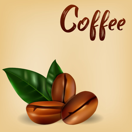Realistic coffee beans with leaves. Vector illustration on the background of old paper. Illustration